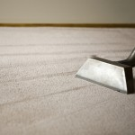 3 Areas Cleaned Carpet Cleaning Specials
